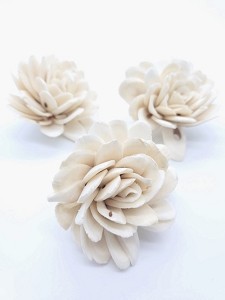 Sola Roses - set of 3